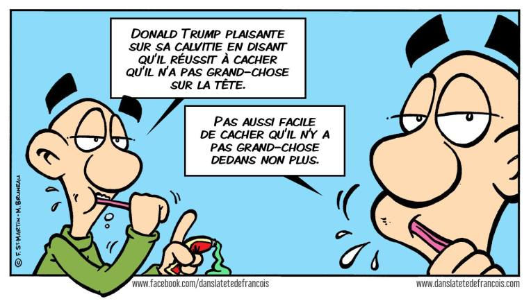 La calvitie de Donald Trump